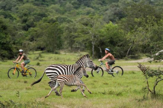 8 days Uganda bike Tour