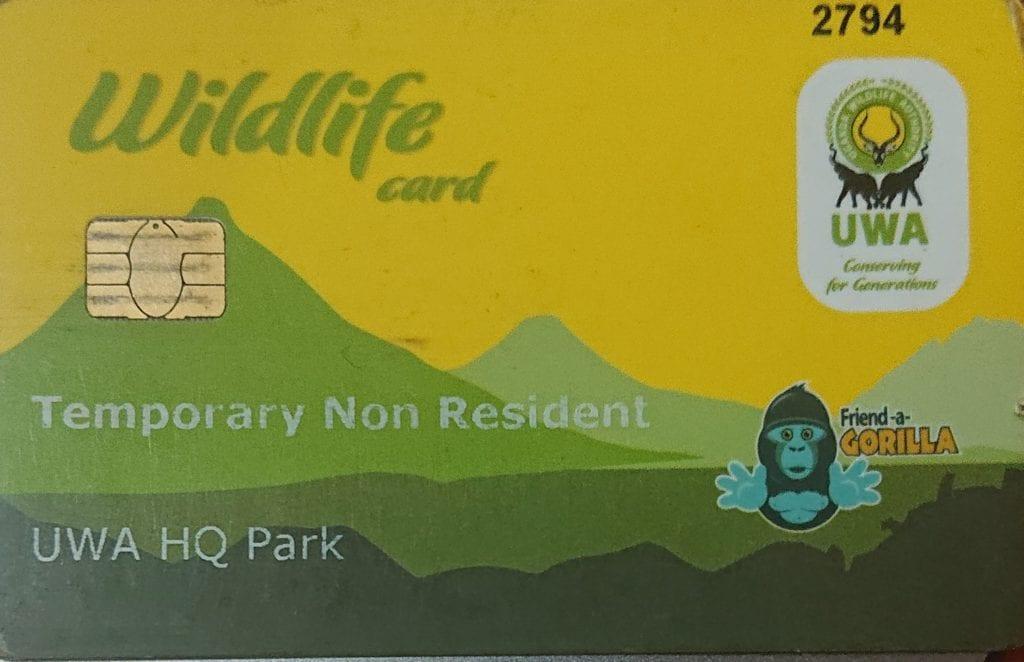 Uganda increases gorilla trekking fees