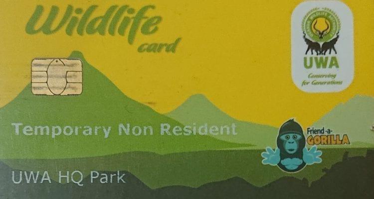 Uganda Increases Gorilla Trekking Fees.