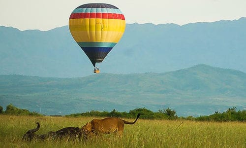 Visit Murchison Falls