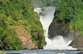 10 days Uganda Safari to Kidepo, Murchison, Kibale and Bwindi