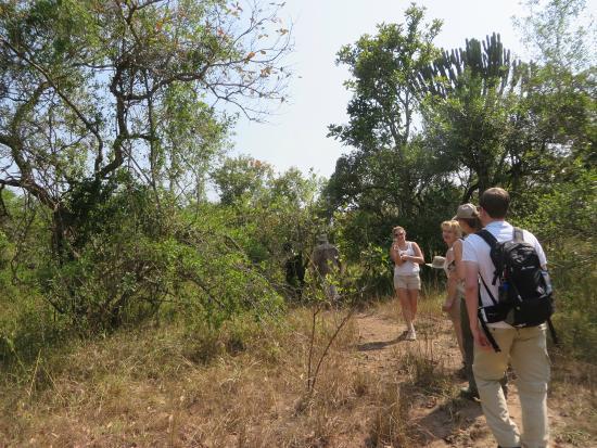The Ziwa Rhino Sanctuary