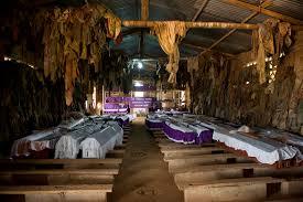 Ntarama Genocide memorial.