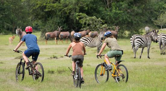 Lake Mburo Cycling