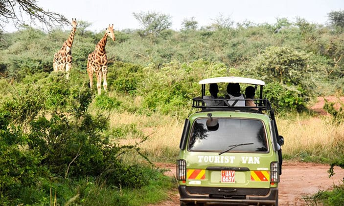 Why Visit Murchison Falls